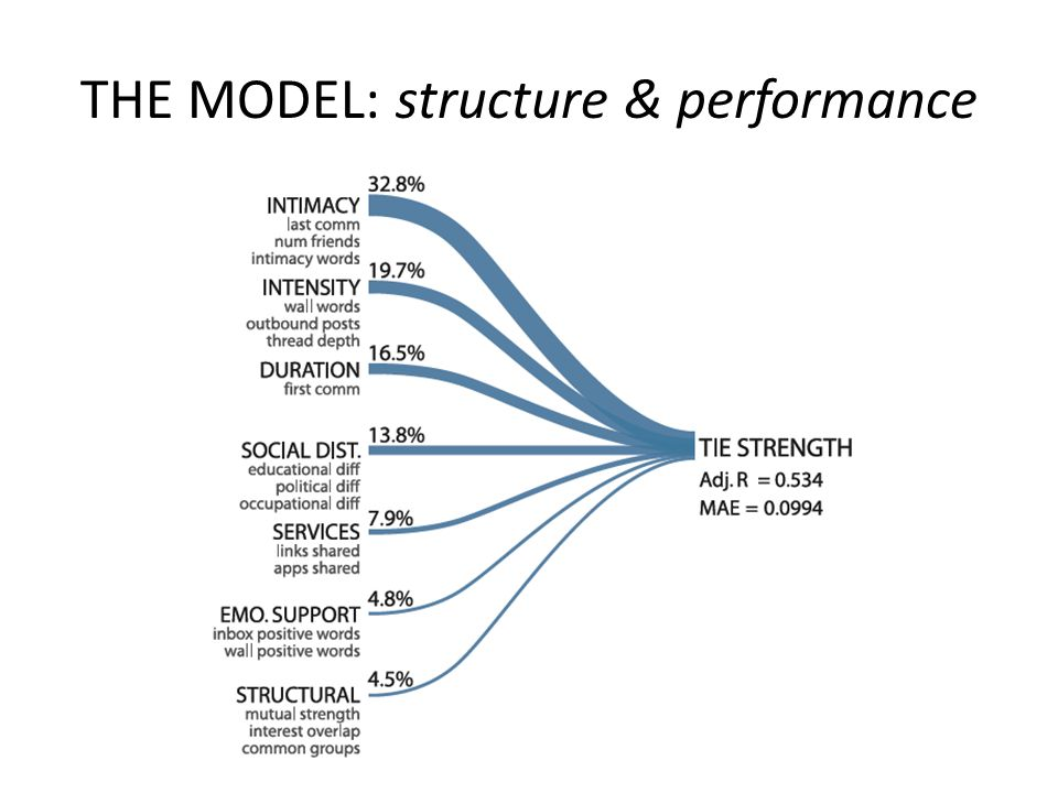 THE MODEL: structure & performance