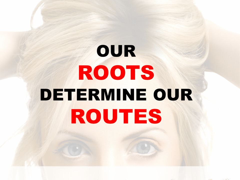 OUR ROOTS DETERMINE OUR ROUTES