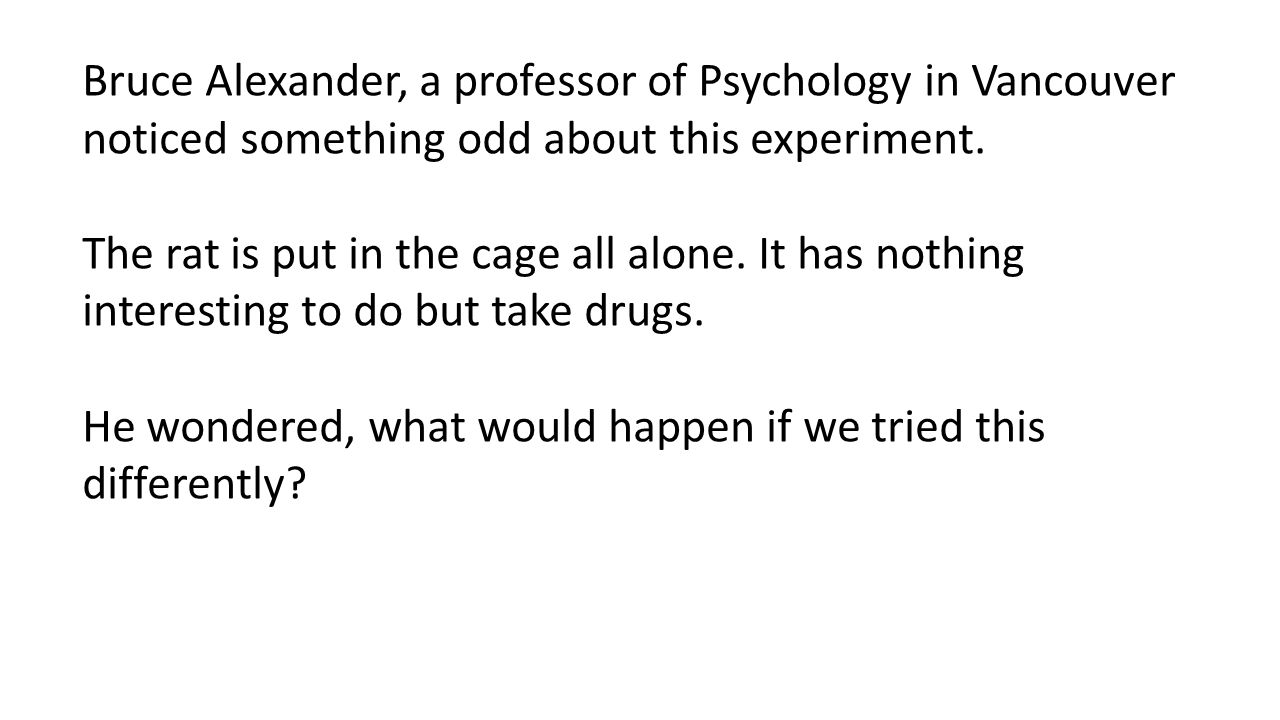 Bruce Alexander, a professor of Psychology in Vancouver noticed something odd about this experiment.