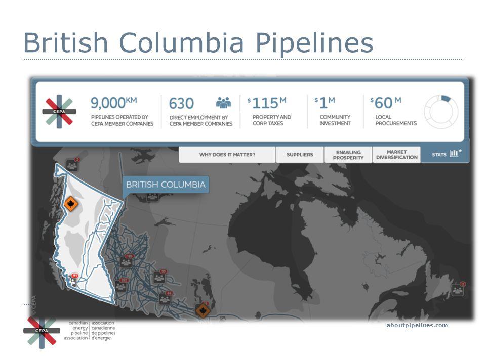 aboutpipelines.com Questions.