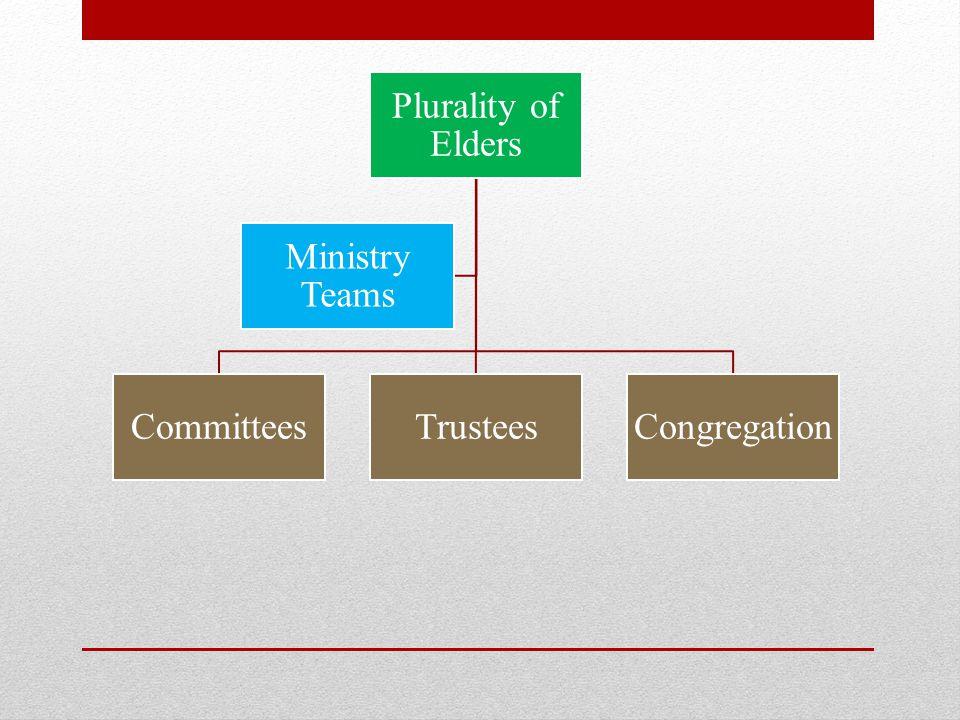 Plurality of Elders CommitteesTrusteesCongregation Ministry Teams