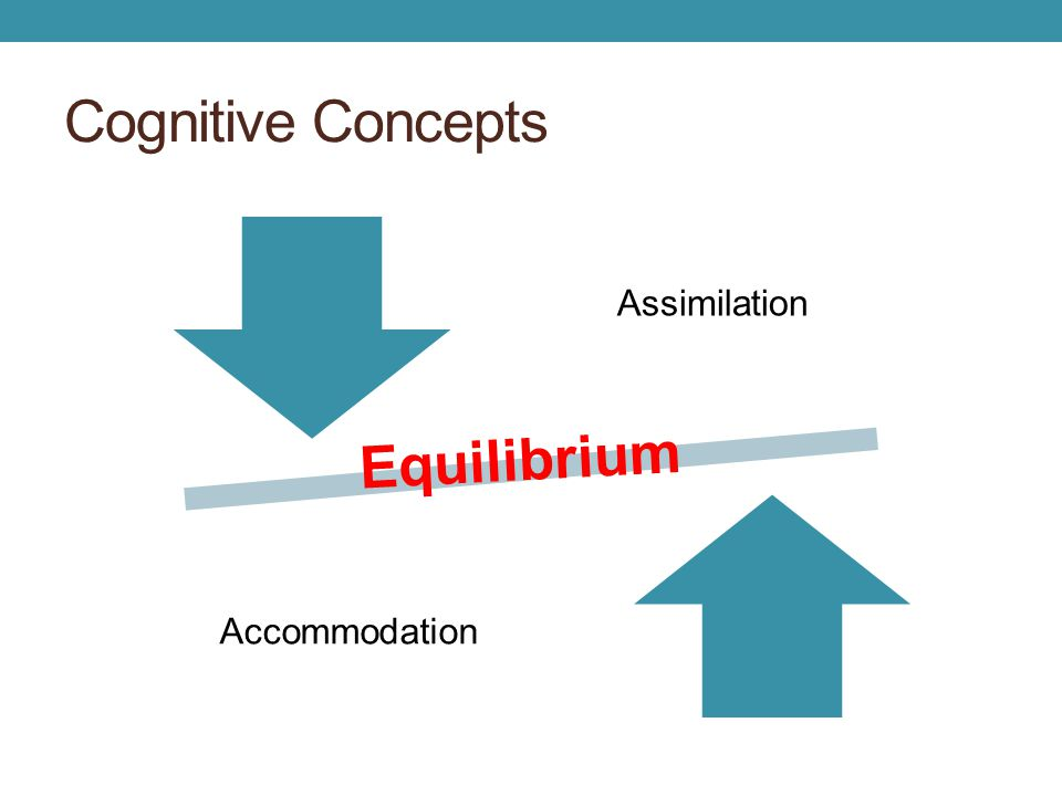 Cognitive Concepts Assimilation Accommodation Equilibrium
