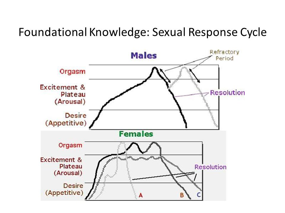 Foundational Knowledge: Sexual Response Cycle