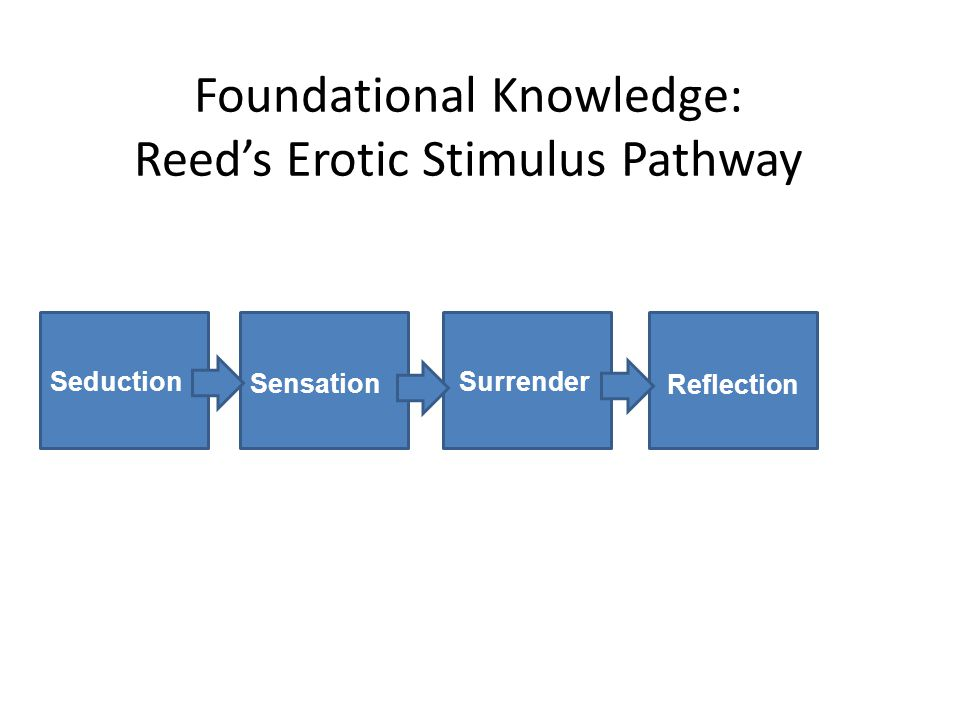 Foundational Knowledge: Reed's Erotic Stimulus Pathway Seduction Surrender Sensation Reflection