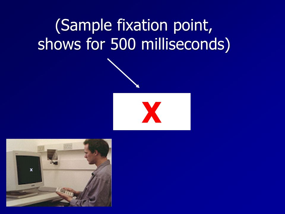 (Sample fixation point, shows for 500 milliseconds) X X