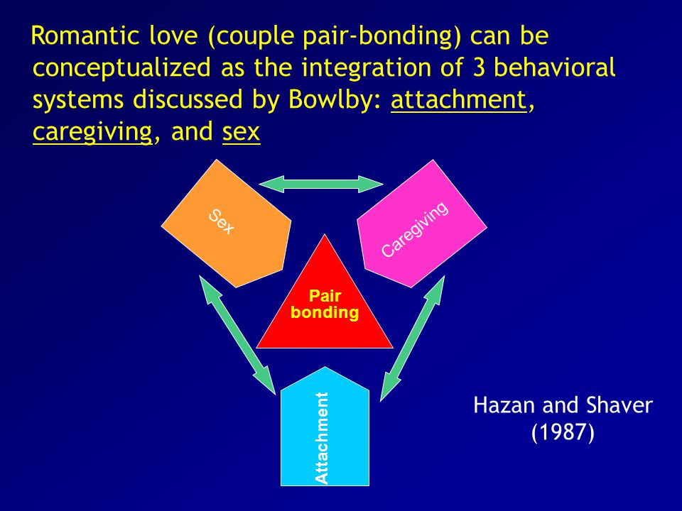Romantic love (couple pair-bonding) can be conceptualized as the integration of 3 behavioral systems discussed by Bowlby: attachment, caregiving, and sex Pair bonding Caregiving Attachment Sex Hazan and Shaver (1987)
