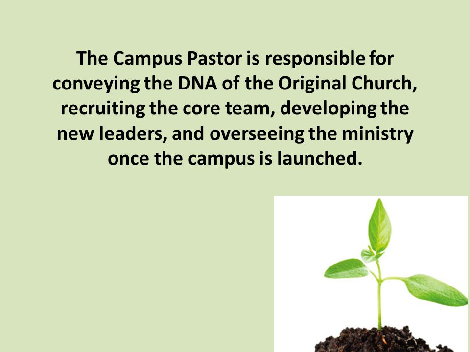 The Campus Pastor is responsible for conveying the DNA of the Original Church, recruiting the core team, developing the new leaders, and overseeing the ministry once the campus is launched.