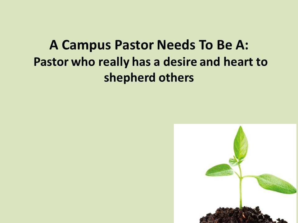 A Campus Pastor Needs To Be A: Pastor who really has a desire and heart to shepherd others