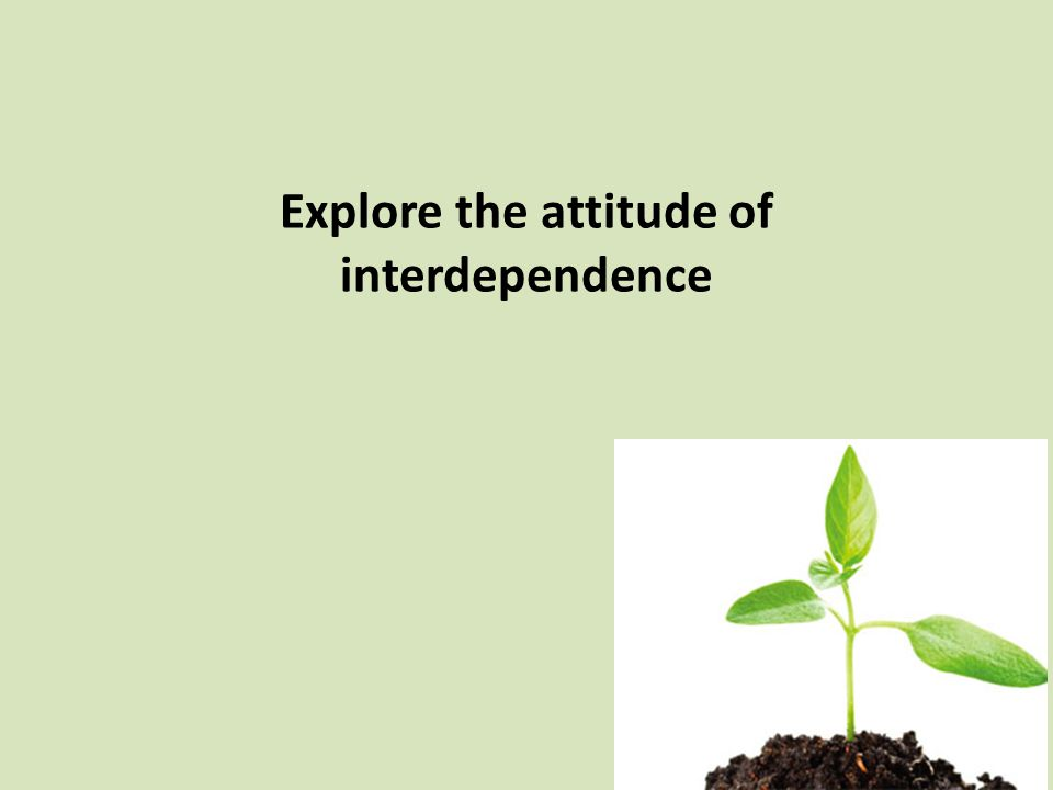 Explore the attitude of interdependence