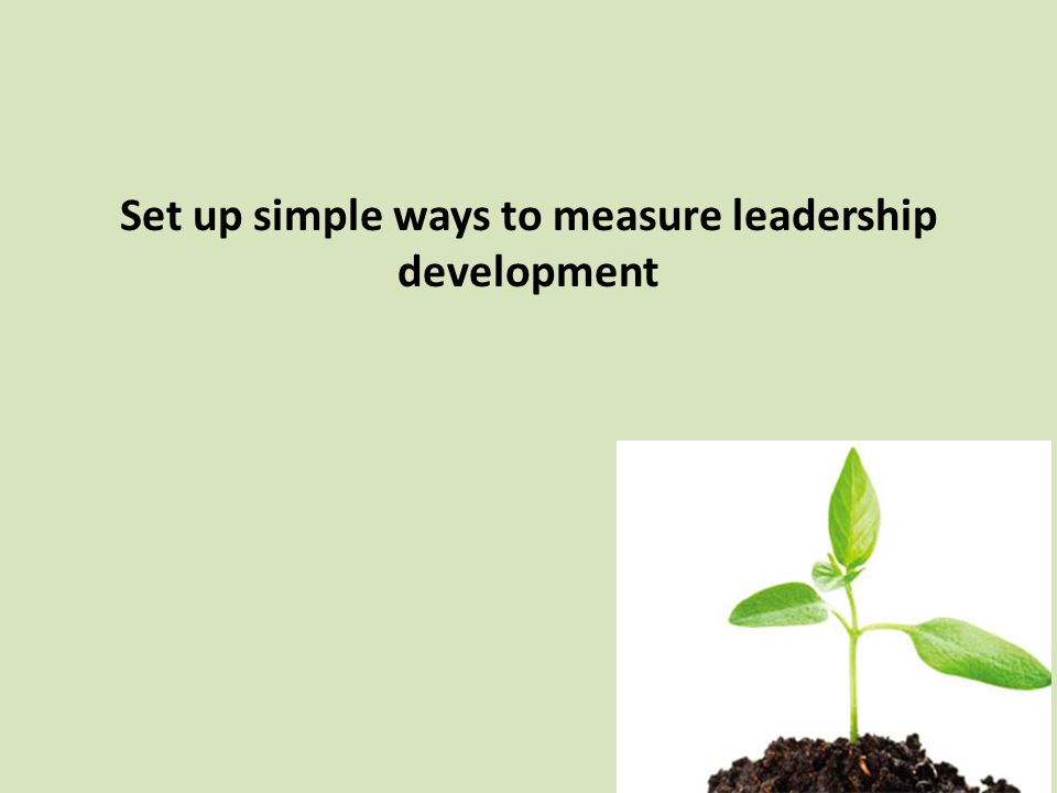 Set up simple ways to measure leadership development