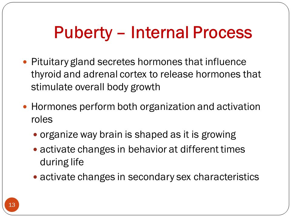 Puberty – Internal Process 13 Pituitary gland secretes hormones that influence thyroid and adrenal cortex to release hormones that stimulate overall body growth Hormones perform both organization and activation roles organize way brain is shaped as it is growing activate changes in behavior at different times during life activate changes in secondary sex characteristics