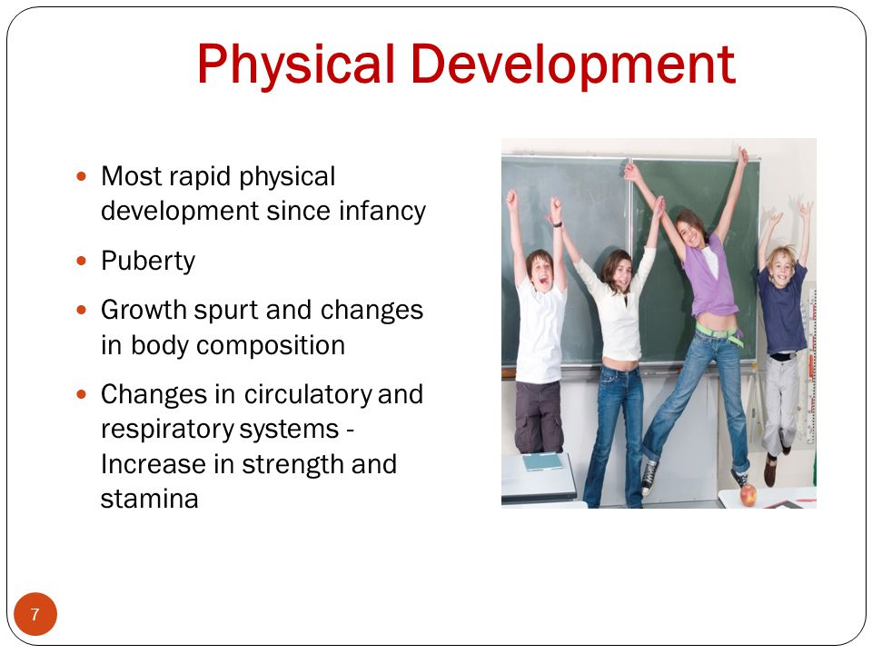 Physical Development 7 Most rapid physical development since infancy Puberty Growth spurt and changes in body composition Changes in circulatory and respiratory systems - Increase in strength and stamina