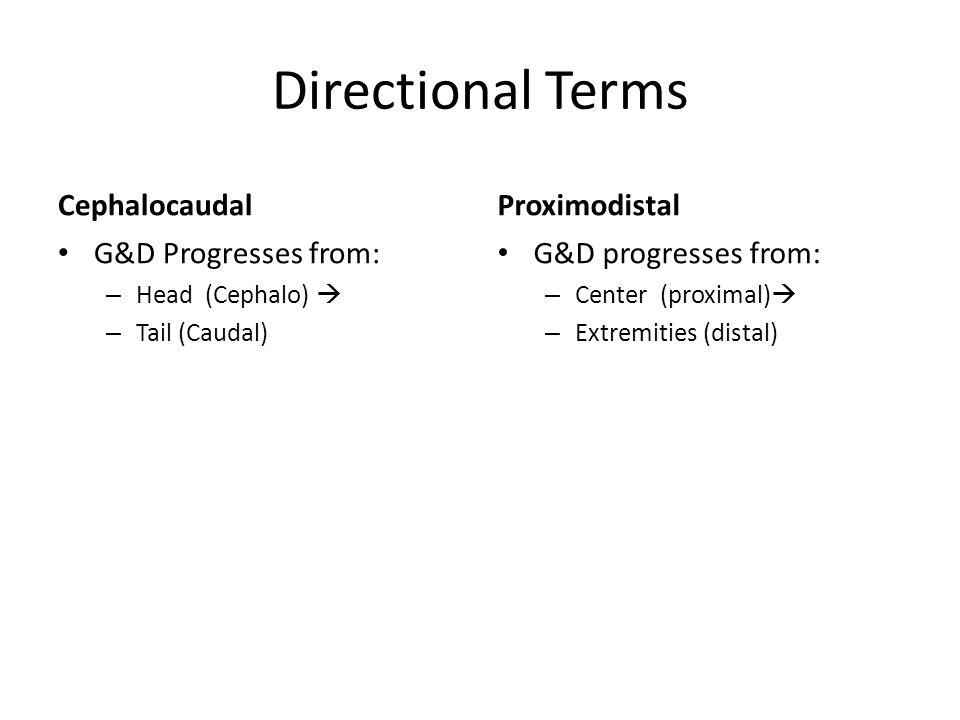 Directional Terms Cephalocaudal G&D Progresses from: – Head (Cephalo)  – Tail (Caudal) Proximodistal G&D progresses from: – Center (proximal)  – Extremities (distal)