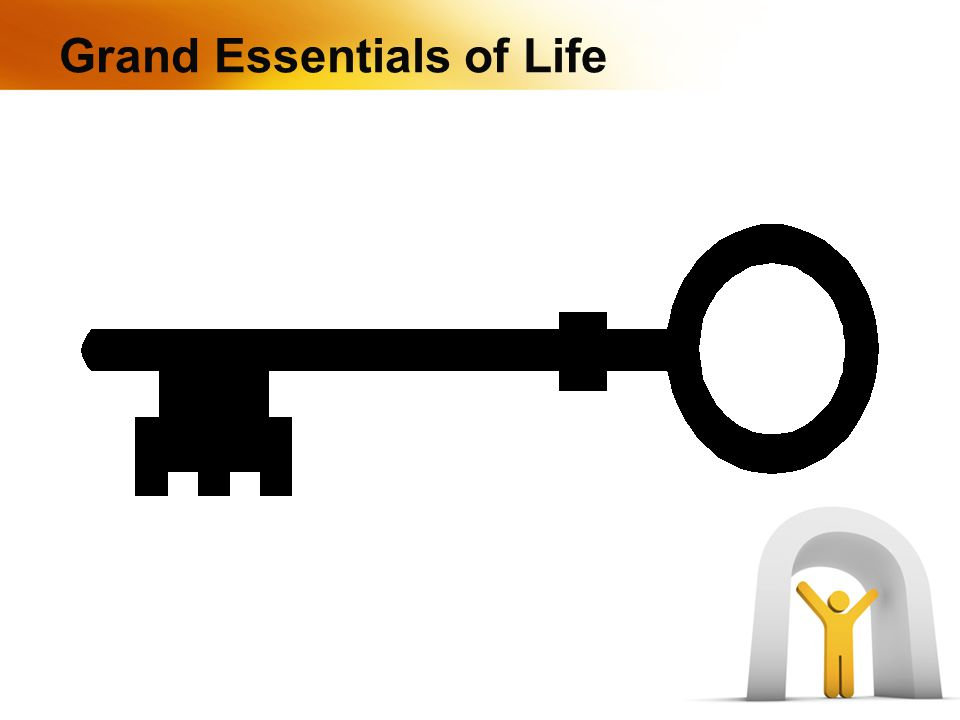 Grand Essentials of Life
