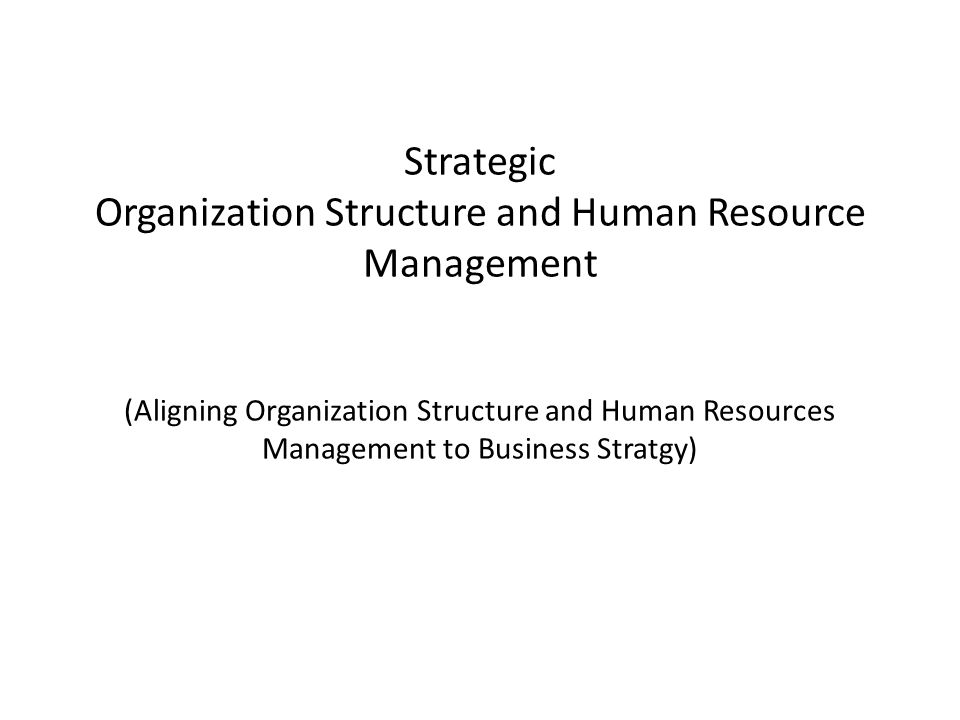 Strategic Organization Structure and Human Resource Management (Aligning Organization Structure and Human Resources Management to Business Stratgy)