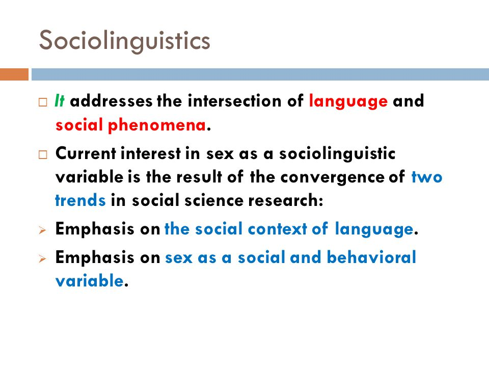 Sociolinguistics  It addresses the intersection of language and social phenomena.
