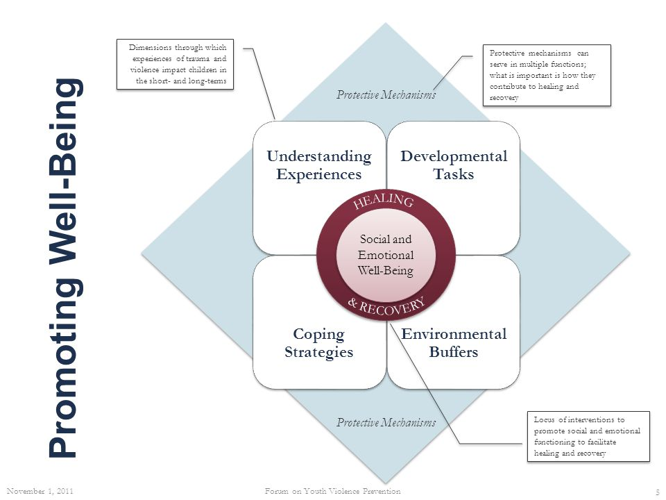 Promoting Resilience Adapted from: Lippman, LH; Moore, KA & McIntosh, H.