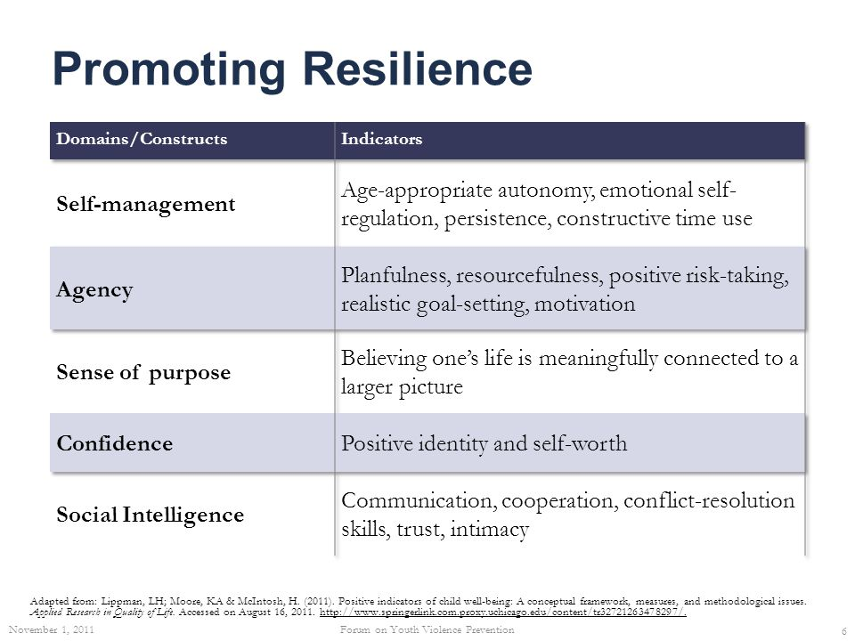Promoting Resilience (Cont'd.) Adapted from: Lippman, LH; Moore, KA & McIntosh, H.