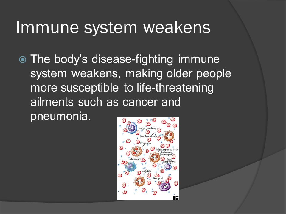 Immune system weakens  The body's disease-fighting immune system weakens, making older people more susceptible to life-threatening ailments such as cancer and pneumonia.