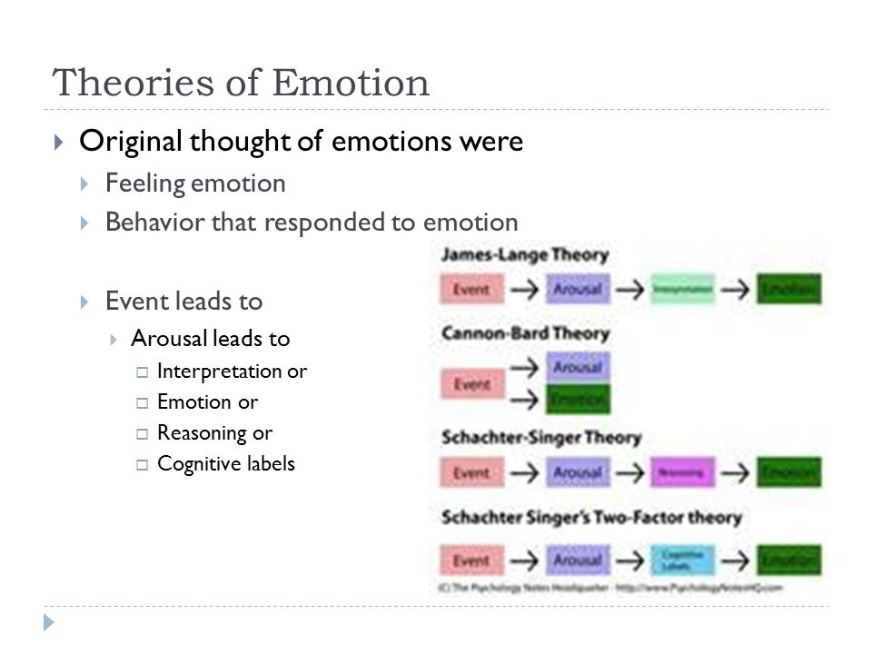 James-Lange Theory  Event Arousal Interpretation Emotion  We will read what our body says and then label the emotion