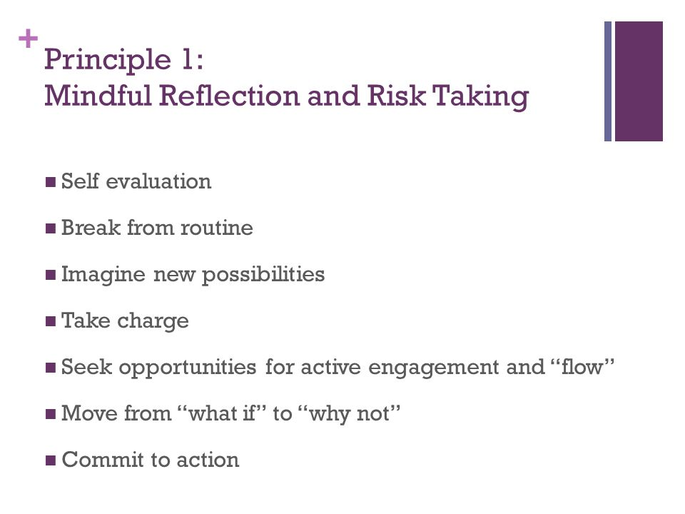 + Principle 1: Mindful Reflection and Risk Taking Self evaluation Break from routine Imagine new possibilities Take charge Seek opportunities for active engagement and flow Move from what if to why not Commit to action