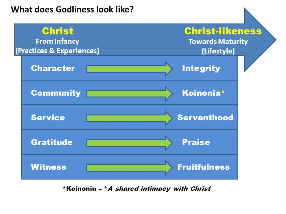 ChristChrist-likeness From Infancy (Practices & Experiences) Towards Maturity (Lifestyle) CharacterIntegrity Community ServiceServanthood GratitudePraise WitnessFruitfulness Koinonia* What does Godliness look like.