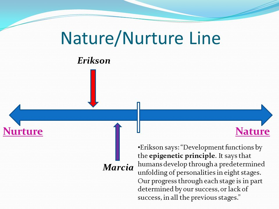 NurtureNature Erikson Marcia Nature/Nurture Line Erikson says: Development functions by the epigenetic principle.