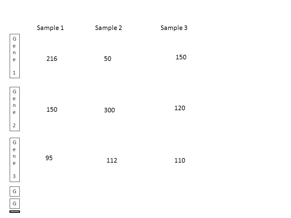 Sample 1Sample 2Sample 3 Gene 1Gene 1 Gene 2Gene 2 Gene 3Gene 3 g1p1 g1p2 g1p3 g1p4 G G g2p1 g2p2 g2p3 g2p4 g3p1 g3p2 g3p3 g3p4 g1p1 g1p2 g1p3 g1p4 g2