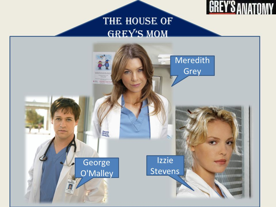 THE HOUSE OF GREY'S MOM Meredith Grey George O Malley Izzie Stevens