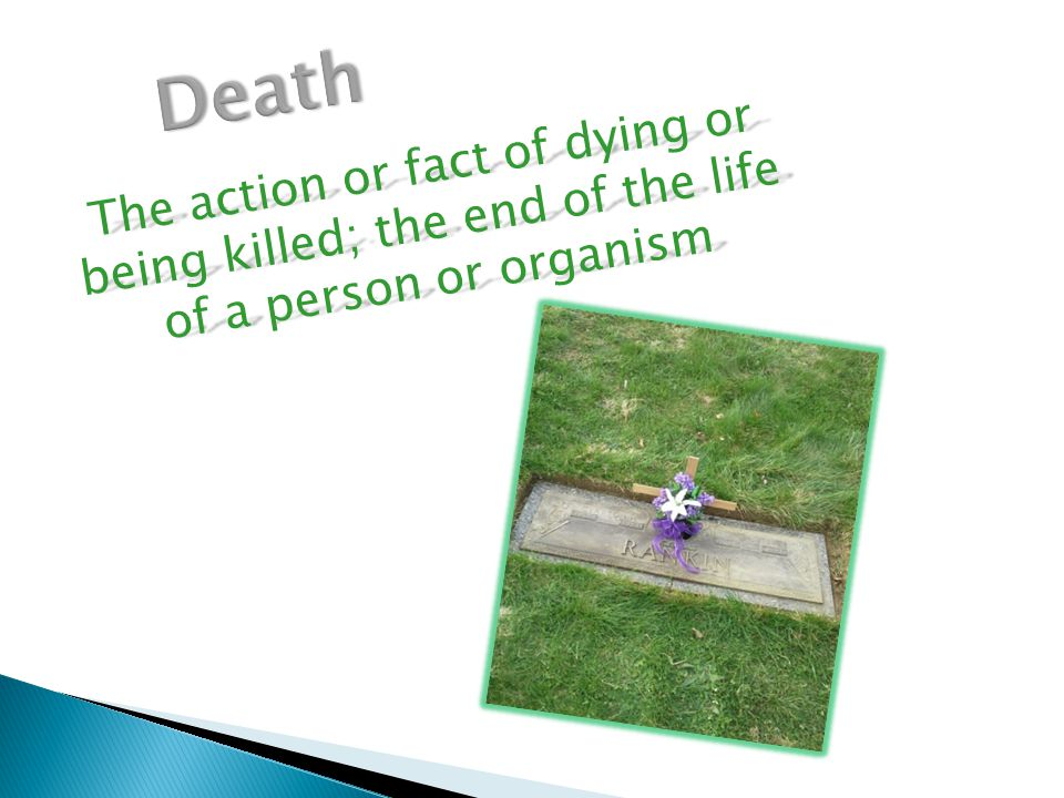 The action or fact of dying or being killed; the end of the life of a person or organism