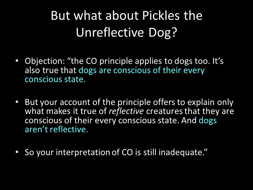 Objection: the CO principle applies to dogs too.