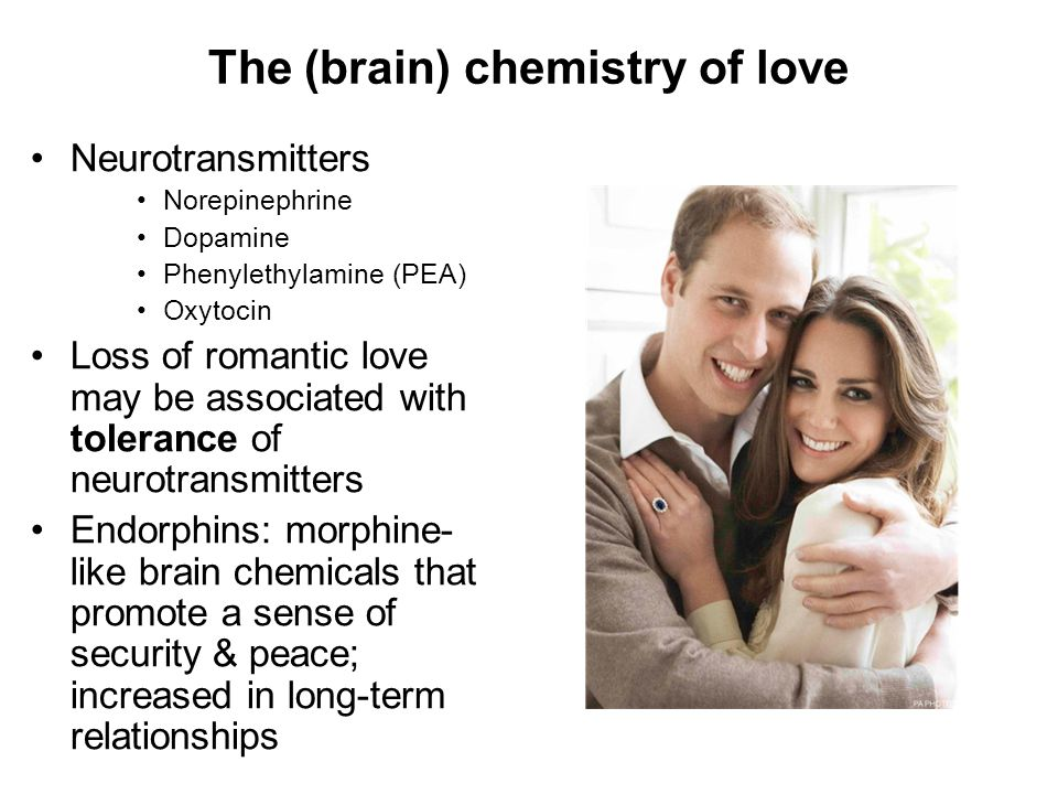 The (brain) chemistry of love Neurotransmitters Norepinephrine Dopamine Phenylethylamine (PEA) Oxytocin Loss of romantic love may be associated with t