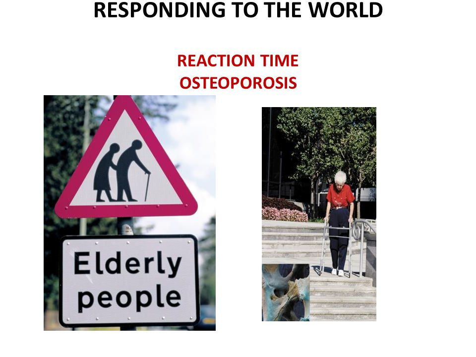 RESPONDING TO THE WORLD REACTION TIME OSTEOPOROSIS