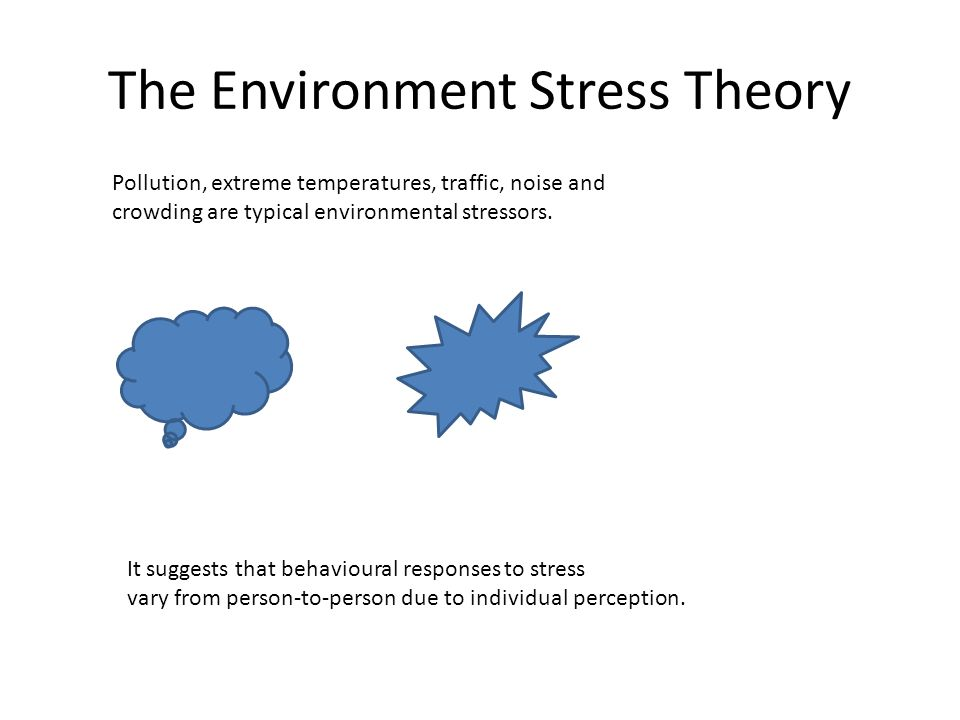 The Environment Stress Theory Pollution, extreme temperatures, traffic, noise and crowding are typical environmental stressors.