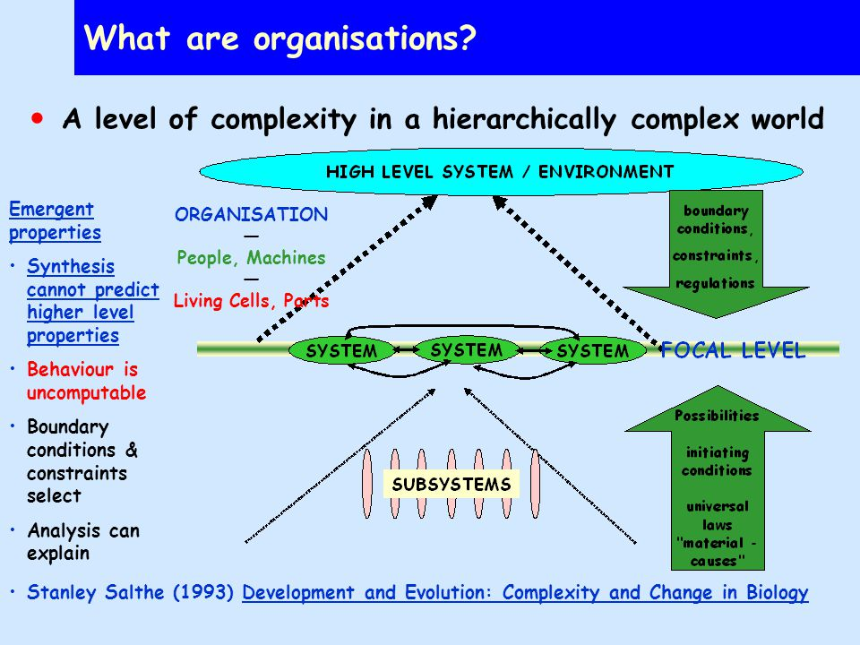 The organisation is a self-sustaining complex system in the environment Processes (which may be complex subsystems in their own rights) are necessary responses to imperatives: –Survival –Self-maintenance of the processes themselves Constraints and boundaries(laws of nature determine what is possible) The organisation s imperatives and goals Hall, W.P.