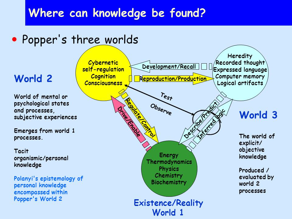 What kinds of knowledge exist in a complex hierarchy.