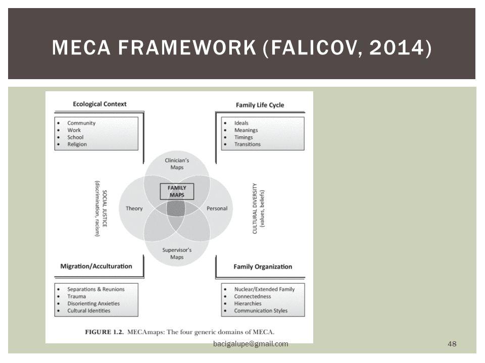 MECA FRAMEWORK (FALICOV, 2014) bacigalupe@gmail.com 48
