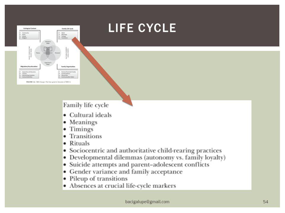 LIFE CYCLE bacigalupe@gmail.com 54
