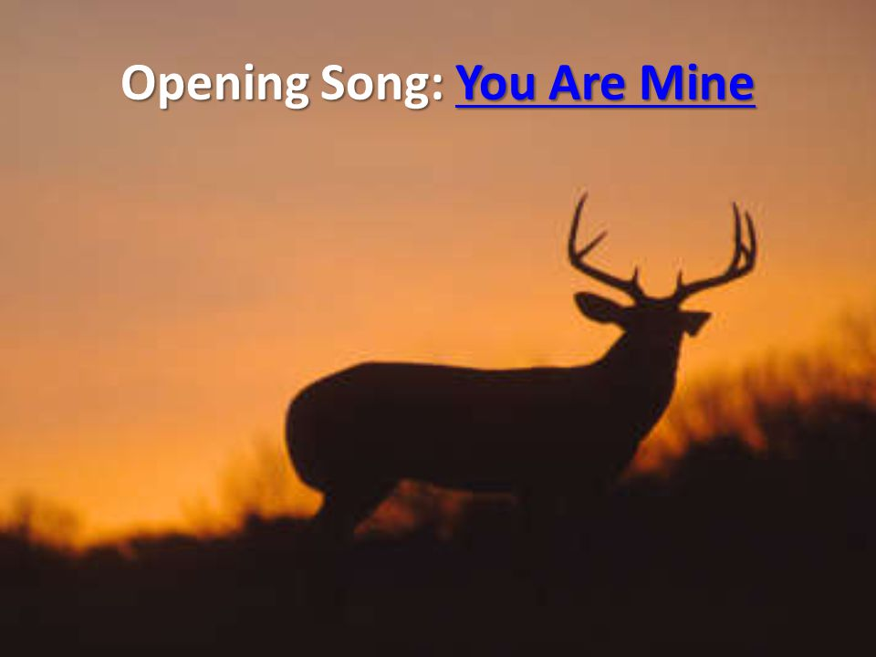 Opening Song: You Are Mine You Are MineYou Are Mine
