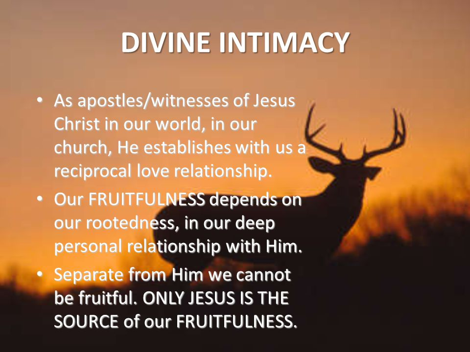 DIVINE INTIMACY As apostles/witnesses of Jesus Christ in our world, in our church, He establishes with us a reciprocal love relationship.