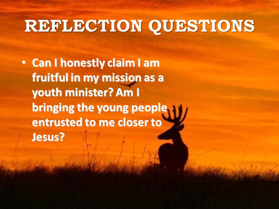 REFLECTION QUESTIONS Can I honestly claim I am fruitful in my mission as a youth minister.