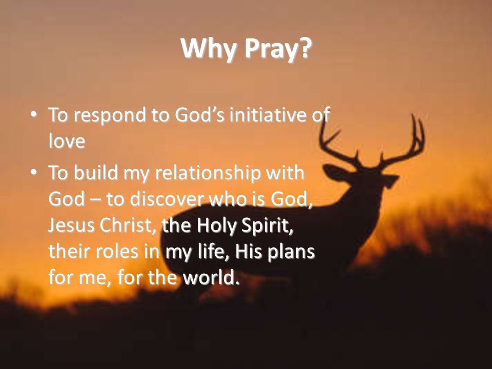 Why Pray? To respond to God's initiative of love To respond to God's initiative of love To build my relationship with God – to discover who is God, Je