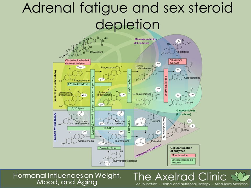 Hormonal Influences on Weight, Mood, and Aging Adrenal fatigue and sex steroid depletion