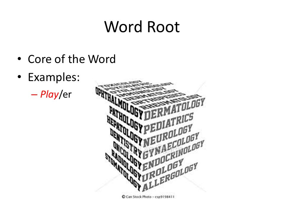 Word Root Core of the Word Examples: – Play/er