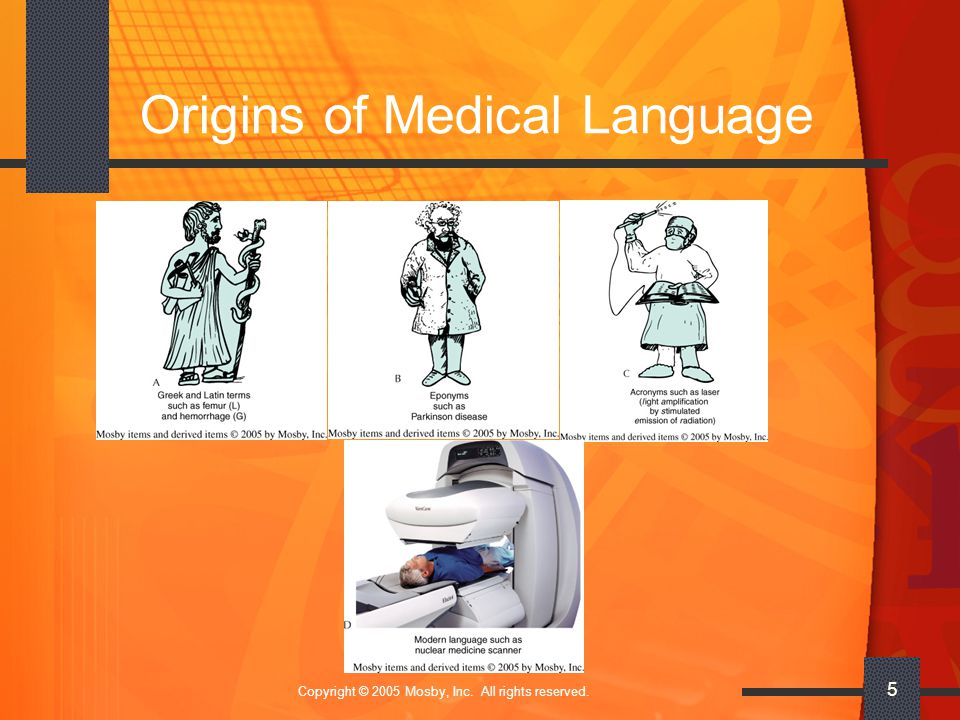 Copyright © 2005 Mosby, Inc. All rights reserved. 5 Origins of Medical Language