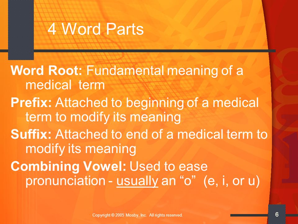 Copyright © 2005 Mosby, Inc. All rights reserved. 6 4 Word Parts Word Root: Fundamental meaning of a medical term Prefix: Attached to beginning of a m