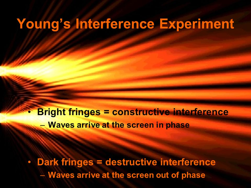 Young's Interference Experiment Bright fringes = constructive interference –Waves arrive at the screen in phase Dark fringes = destructive interferenc