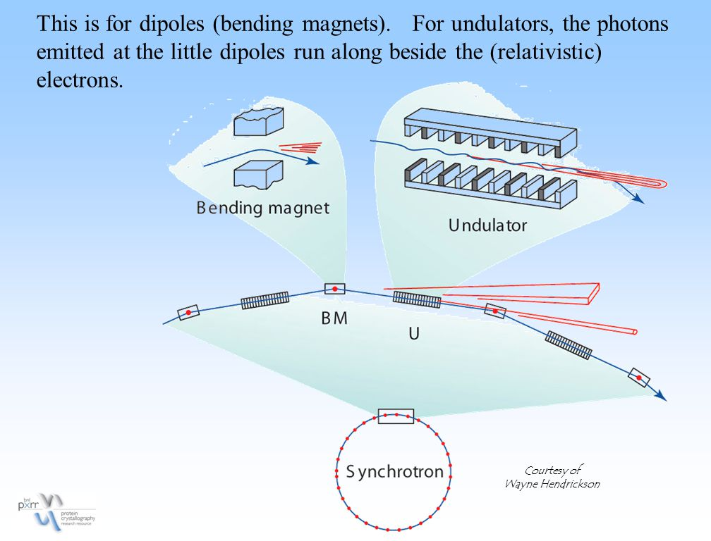 This is for dipoles (bending magnets). For undulators, the photons emitted at the little dipoles run along beside the (relativistic) electrons. Courte