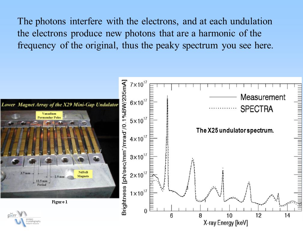 The X25 undulator spectrum. The photons interfere with the electrons, and at each undulation the electrons produce new photons that are a harmonic of