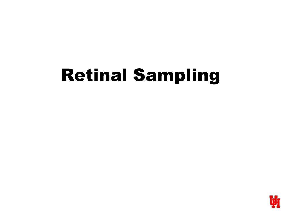Retinal Sampling